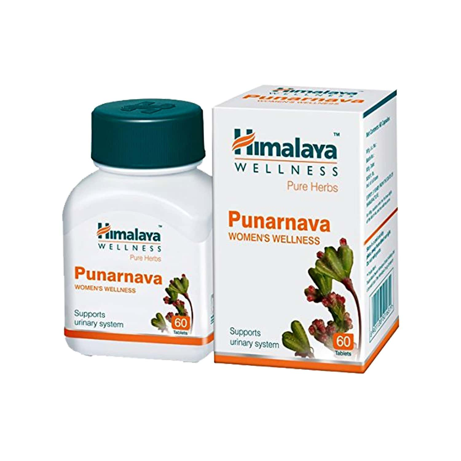 Himalaya Wellness Pure Herbs Punarnava Kidney Care Tablets Of 60
