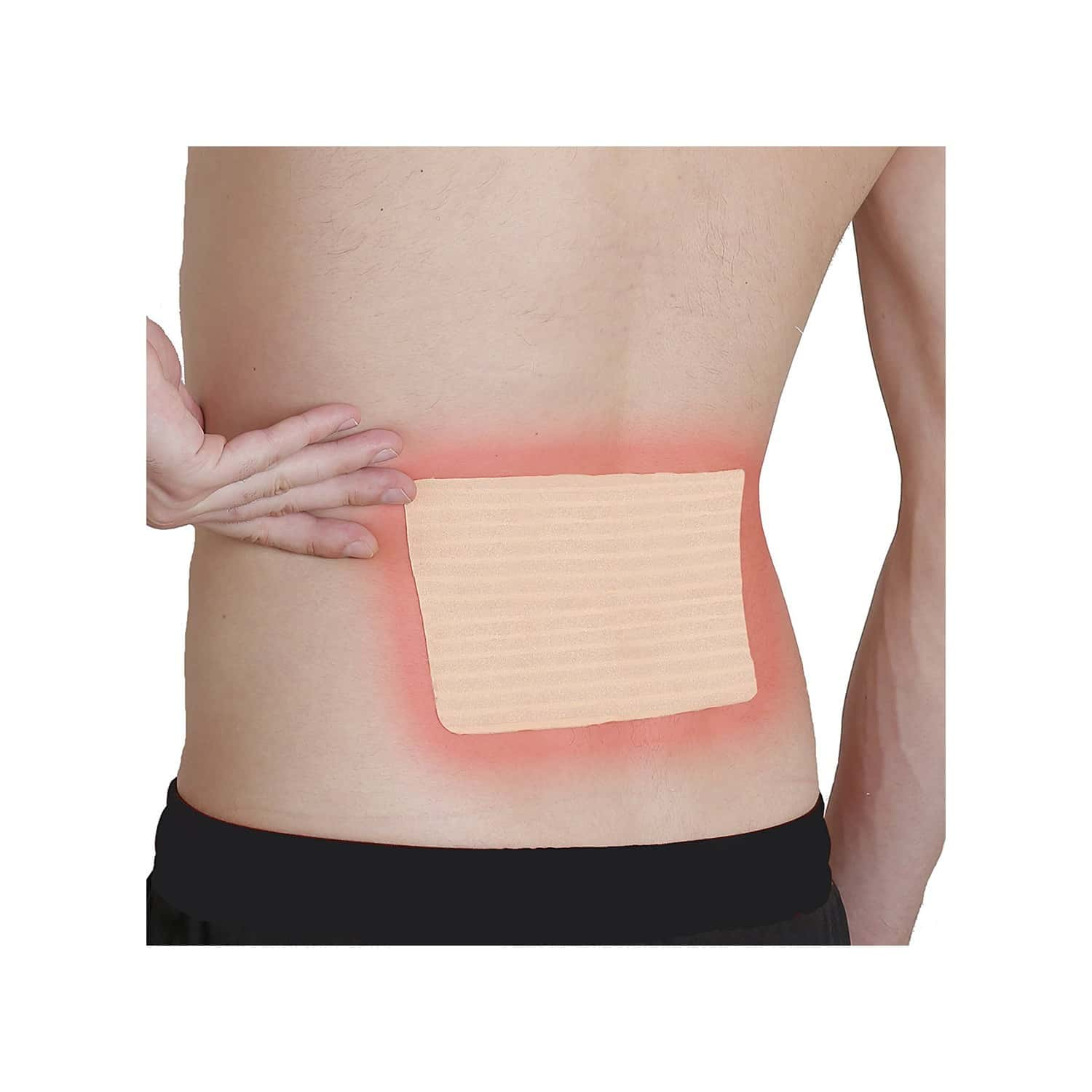 Viopatch Herbal Back Pain Patch Packet Of 5 's