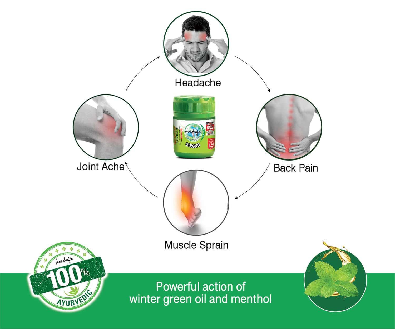 Amrutanjan Strong Pain Relief Balm Bottle Of 27.5 Ml