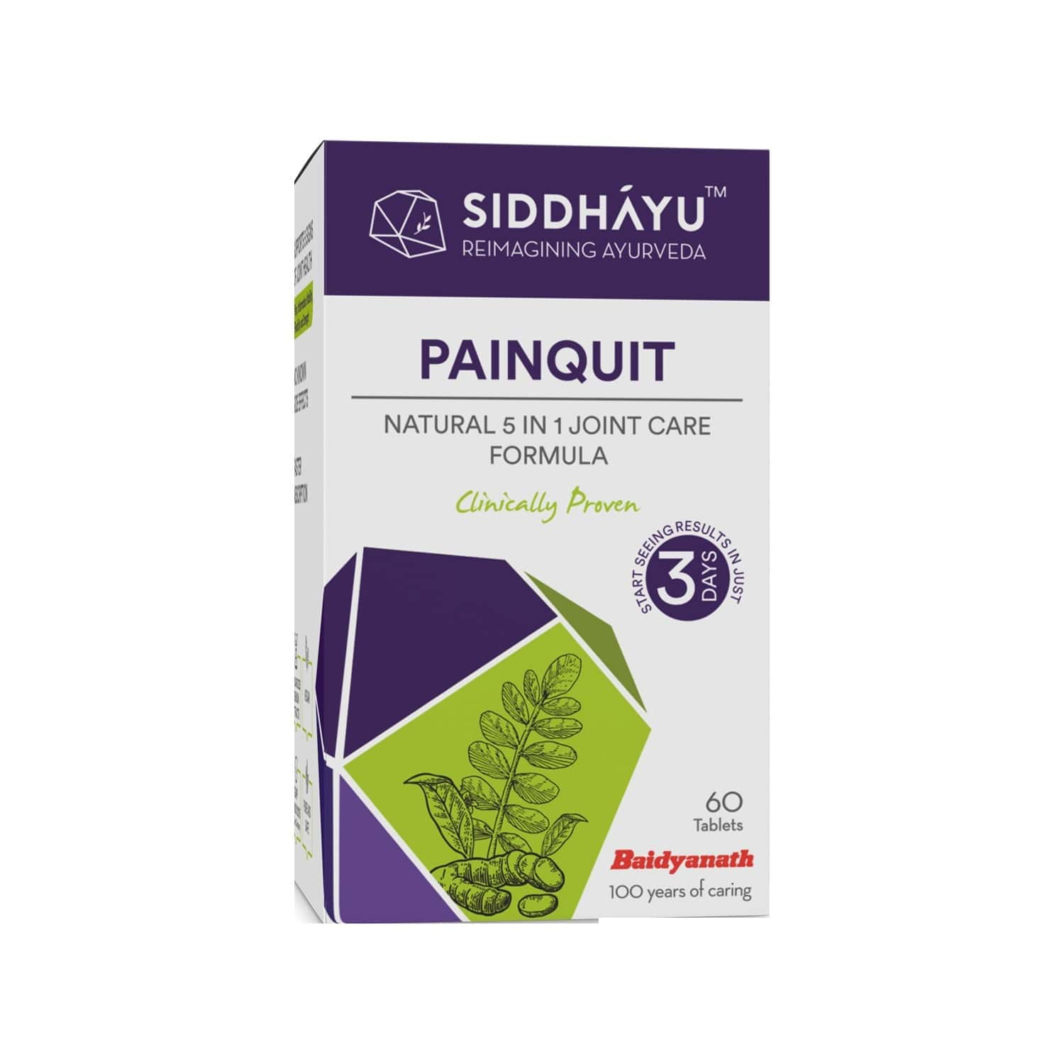 Siddhayu Painquit Tablet Pain Relief Supplement | Ayurvedic Herbal Remedy For Bones And Joints I Natural Joint Pain Relief Capsules I Arthritis Pain | 60 Tablets X 1