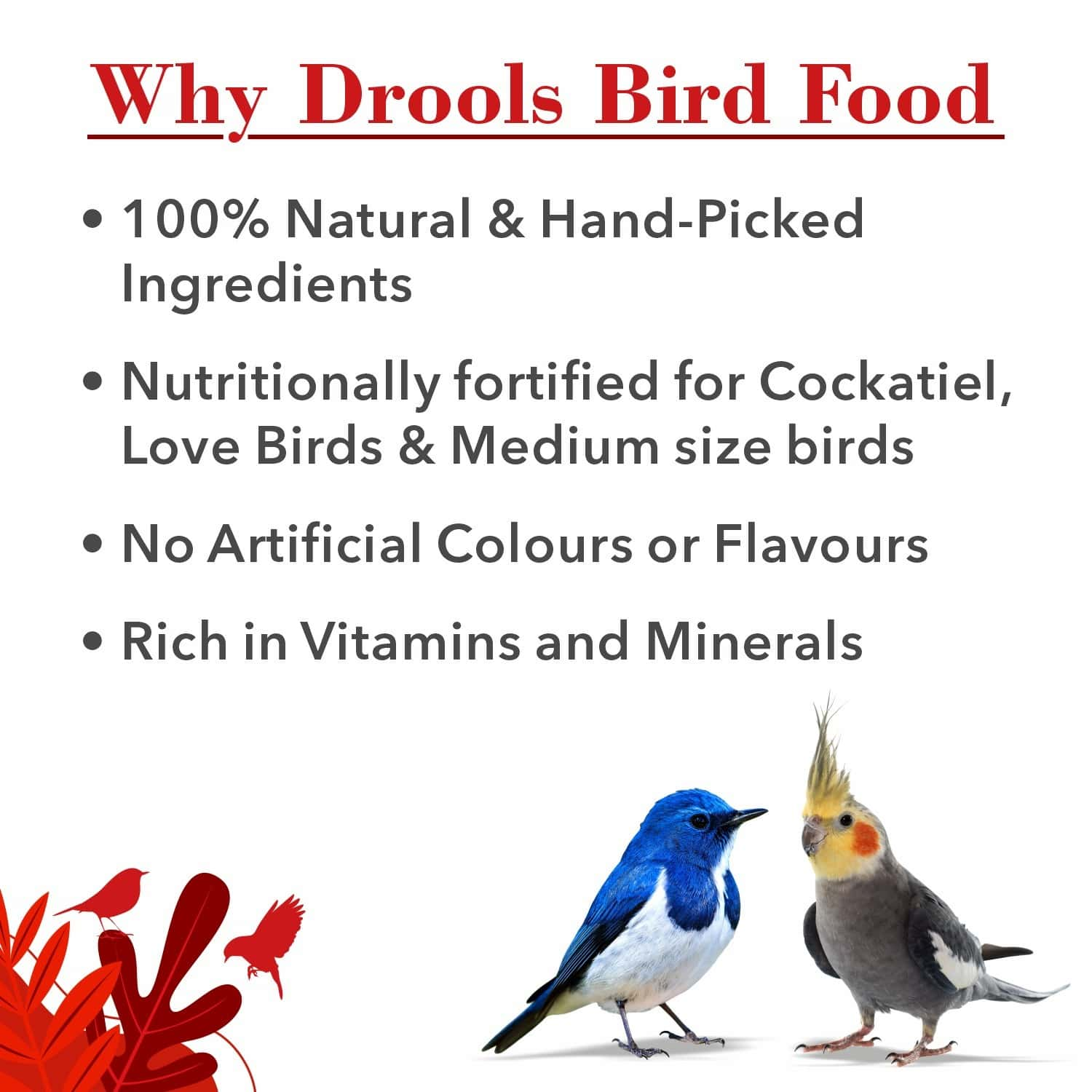 Drools Bird Food For Love Birds And Cockatiel With Mixed Seeds 1kg